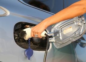 Los fabricantes japoneses se unen en favor del coche eléctrico
