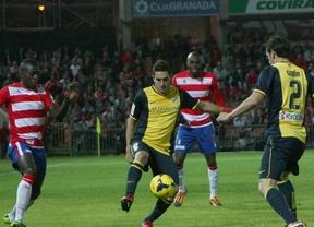 Final de Liga: alegría de Champions para Atlético y Valencia, tragedia de descenso para Almería y Eibar