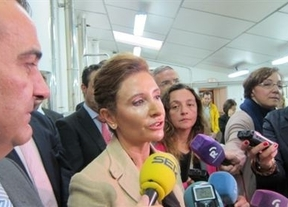 La Junta sacará 'en breve' a concurso el suelo industrial propiedad de la Consejería de Fomento