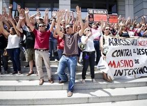 La Junta esperará a que la sentencia sea 'firme' para readmitir a los interinos despedidos