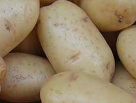 La Junta denuncia que seis cadenas de distribución realizan prácticas abusivas en el precio de la patata