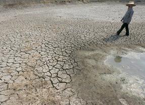 La ONU da la voz de alarma: el cambio clim�tico amenaza la seguridad sanitaria