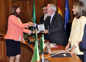 Ciudad Real recibe el premio 'banderas verdes' por la limpieza y gestión de residuos y jardines