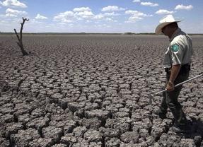 Iberdrola, Repsol y FCC investigan contra el cambio climático