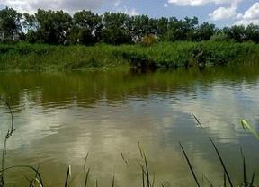 Ecologistas en Acción de Guadalajara no aceptan más regulaciones en los ríos Jarama y Sorbe