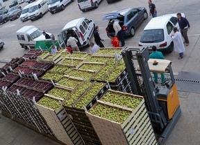En Toledo esperan recoger 40.000 kilos para el Banco de Alimentos el próximo fin de semana