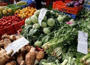 Investigan cómo convertir los desechos de frutas y verduras en alimentos
