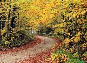 El otoño llegará a las 22.44 horas del domingo