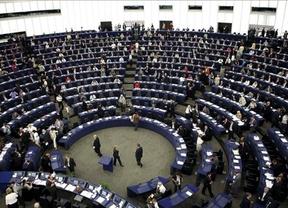 El Tribunal de Estrasburgo carga contra la 'sobreprotección' del Rey en las leyes españolas