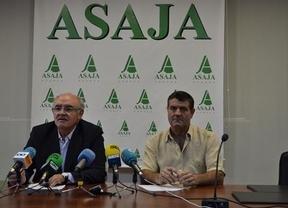 Fresneda dice que la caza ha provocado daños a los agricultores de cuatro millones de euros