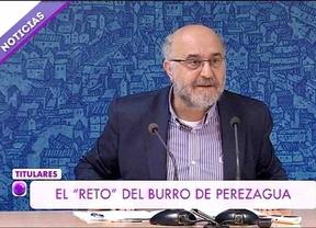 La televisión pública de Castilla-La Mancha llama 'burro' a un concejal socialista en un informativo