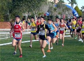La Junta publica las medallas y distinciones al Mérito Deportivo de Castilla-La Mancha