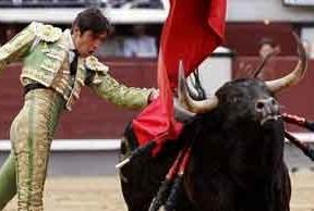 San Isidro: hubo toros (de Alcurrucén, encastados) y torero (Perera, que cortó una oreja de mucho peso