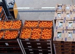 Los bancos de alimentos de la región esperan superar en 2015 los casi cinco millones de kilos