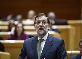 Rajoy recrimina a Amaiur hablar de torturas del Estado y no de ETA
