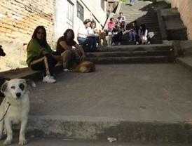 Segunda Campaña de Esterilización de canes en el centro