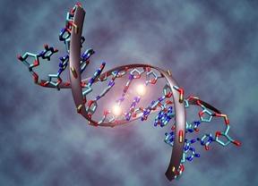 Científicos de varios países, incluyendo España, detallan un nuevo mapa del genoma humano