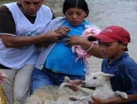 LLuvias en Centroamérica causan 74 muertos