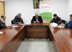 Promancha ayudará a poner en marcha cinco proyectos empresariales en Ciudad Real