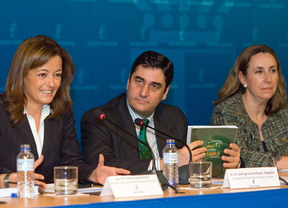 La Junta podrá en marcha un Plan Estratégico de Ayuda a la Familia hasta 2016