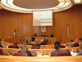El presidente de Diputación de Granada anuncia en pleno la supresión de las dietas