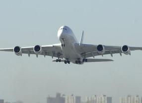 Aterrizaje de emergencia por culpa de una 'fan' de Whitney Houston