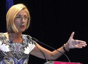 Rosa Díez da por roto el pacto en Asturias: el Gobierno del socialista Javier Fernández se tambalea