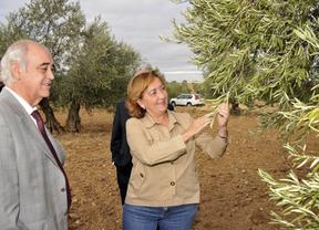Soriano anuncia el pago de 6,5 millones a la agricultura ecológica