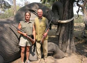 Botsuana, un 'paraíso' de safaris para cazar elefantes por 37.000 euros