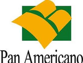El Banco Panamericano negocia su venta