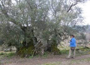 Una ruta que homenajea a Félix Rodríguez de la Fuente
