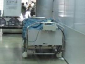 Ministra de Salud confirma 56 casos de gripe AH1N1 en Mérida