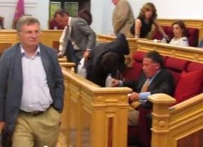 El PP de Toledo abandona el pleno municipal para no escuchar las críticas de una madre de un niño con cáncer