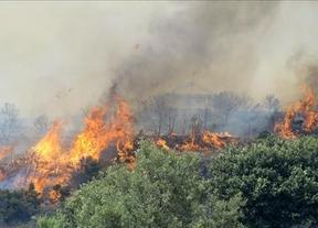 Desalojados los vecinos de una urbanización de Cogolludo (Guadalajara) por un incendio