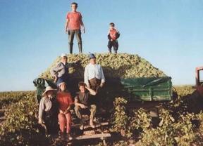Bodegas Agroinfantes, el éxito de una familia que ha conseguido modernizar el campo y crear 30 empleos en plena crisis