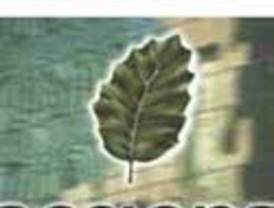 Acciona ve la demanda de E.ON por meterse en Endesa