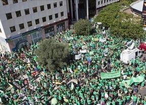 Huelga educativa en Baleares: el séptimo día de paros consigue un 15% de seguimiento docente