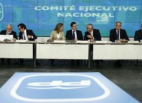 Rajoy pide a los suyos que convenzan al electorado en la campaña europea de que eran necesarias las reformas para salvar a España