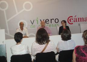 La Cámara de Toledo  impartirá un Máster Internacional en Gestión de Arte Contemporáneo