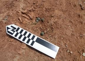 Hallan 10 cascabeles medievales en una tumba infantil en Montiel
