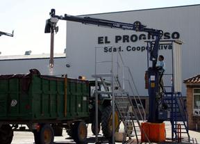 Soriano: La acumulación de uva 'no tiene por qué suponer pérdidas económicas'