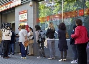Sin brotes verdes en el empleo: la OCDE prevé que nuestra tasa de paro subirá hasta el 28% en 2014