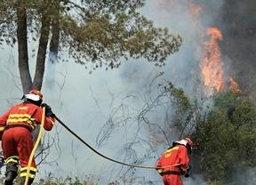 Los incendios no dan tregua... ahora arde Tenerife