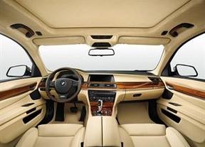 Interior de un automóvil BMW personalizado