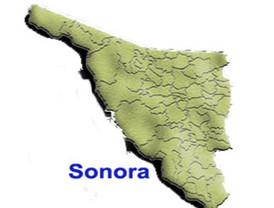 En votación abierta el PRI elegirá a su candidato a gobernador de Sonora