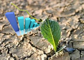 La OCDE pisotea los brotes verdes: España sufrirá en 2013 lo peor de la crisis