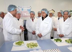 Cospedal anuncia ayudas para incorporar jóvenes al sector agrario