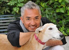 Aseguran que el 'encantador de perros' César Millán se intentó suicidar