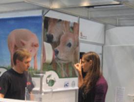 La Junta promueve la expansión de empresas de maquinaria agrícola y ganadera en Italia y Alemania
