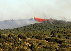 La Asociación de Agentes Medioambientales muestra su preocupación por los últimos fuegos